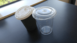 Market Disruptions: Single-Use Plastic Bans and Supply Chain Considerations