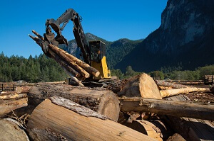 2021 Brings Major Forestry Equipment Product Launches