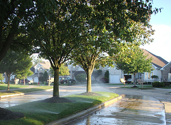 Lawn and Garden Watering