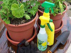 Home & Garden Pesticides
