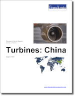 Turbines: China - The Freedonia Group - Industry Market Research